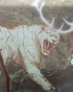 Tigre (3)