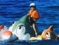 Rokuros dolphin thing
