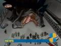 Zilla Animated 16