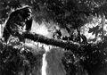 King Kong 1933 Log Bridge Production Pic