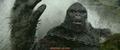 Kong Skull Island - The Island TV Spot - 8