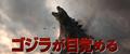 G14 - Japanese TV Spot 4 - 1