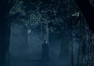 Гуро как видение Гоголя в лесу