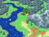 Kolima Forest