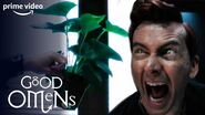 Crowley Versus His House Plants - Good Omens - Prime Video