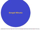Googol-minutia