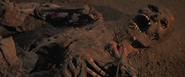 ChesterCopperpot bones