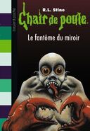 Ghost in the Mirror - French Cover (Ver. 2)