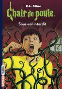 Chair de Poule 17 Sous-sol Interdit (Version 5)