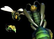 Bees DONG