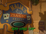 Bad Hare Day/TV episode
