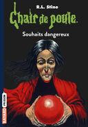 Chair de Poule 20 Souhaits Dangereux (Version 4)
