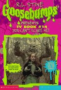 Tv book 14