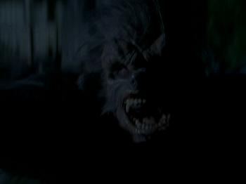 TV (werewolf)