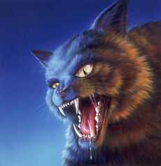 Cry of the Cat - artwork