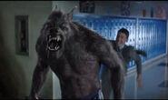 A-werewolf-and-teenage-boy-590035