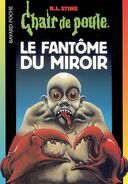 Ghost in the Mirror - French Cover (Ver. 1)