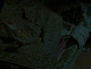 (S1E19) The Werewolf of Fever Swamp - 8