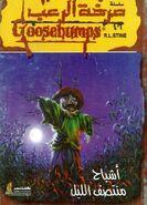 OS 20 Scarecrow walks Midnight Arabic orig cover