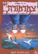 How I Learned to Fly - Hebrew Cover - ככה למדתי לעוף