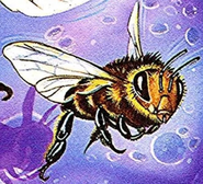 TheBeesUKCover