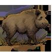Boar.Image.png