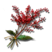 Items.Redberry.png