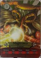 Metalcard 22 magitronco fronte
