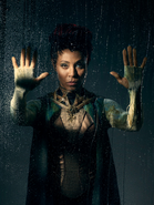 Fish Mooney season 3 promotional