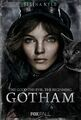 GothamSelinaKyle-1-