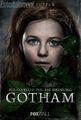 GothamIvyPepper-2-