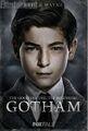 GothamBruceWayne-2-