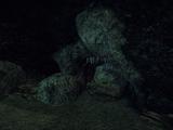 Jaskinia Rakusa