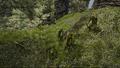 Gobliny pilnujące ruin