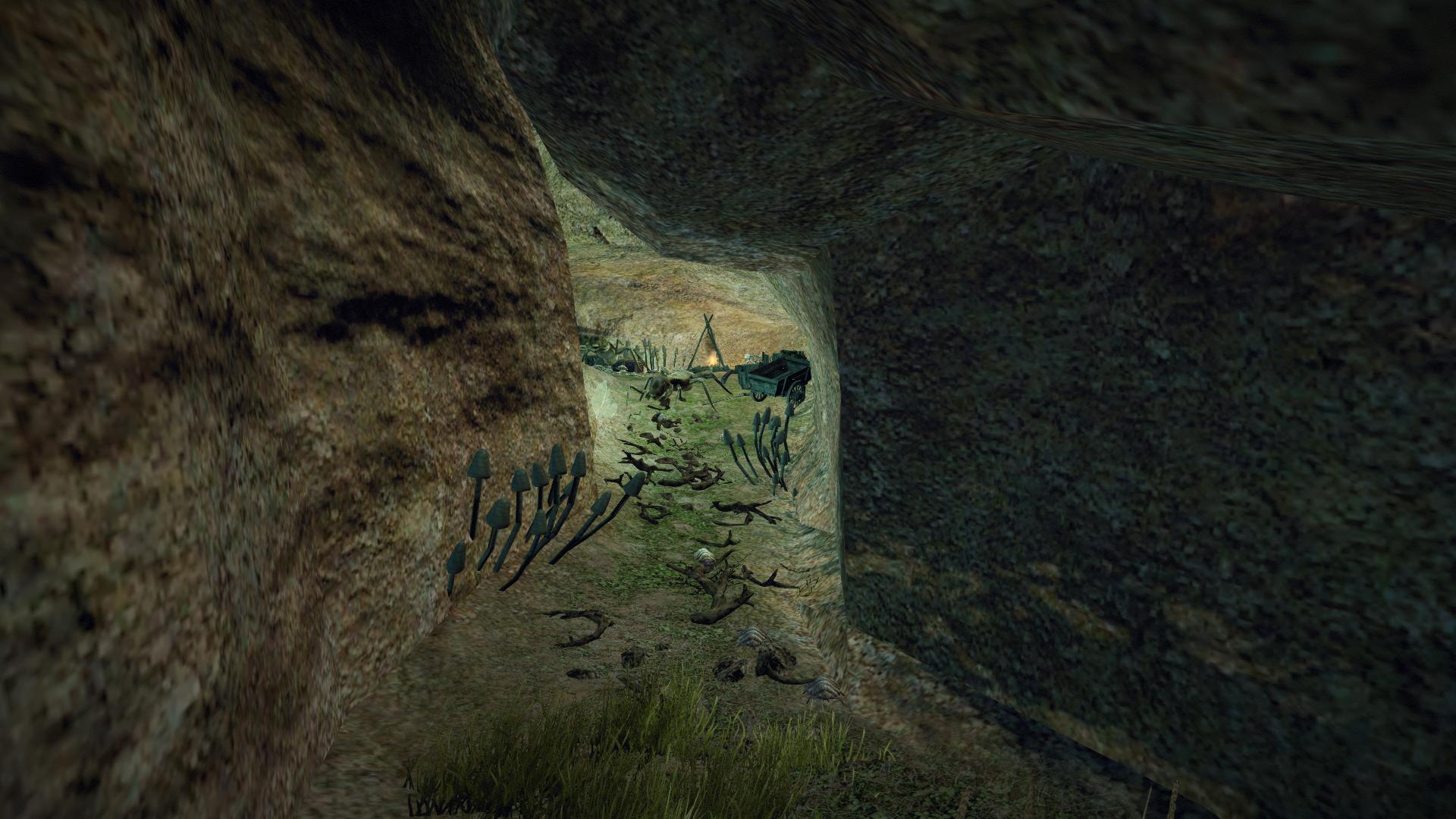 Jaskinia pełzaczy koło obozu Kurta