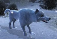 Lodowy wilk (Quest Pack 4) (by Kubar906)
