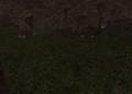 Dawna jaskinia Finkregha