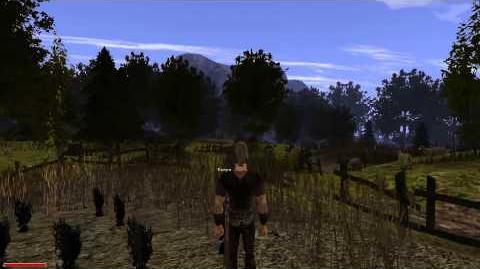 """Gothic II Zadanie """"Zebrać rzepę z pola"""""""