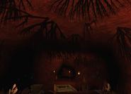 Stara kopalnia - korzenie
