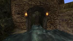 Długi korytarz podchodzący wodą z drzwiami na końcu