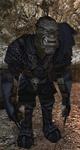 Ork pułkownik z wyspy Khorinis (by SpY)