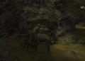 Stara kopalnia - wejście