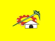 240px-TDPFlag.png