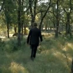 El bosque2.png