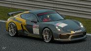Porsche Cayman GT4 Clubsport '16 Michelin Tire Sticker (Pilot Sport)