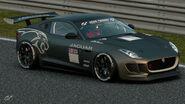Jaguar F-Type Gr.4 Michelin Tire Sticker