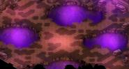 Terrain imp 02