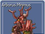 Minimus Accessories