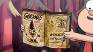 S1e20 The Gnomes!