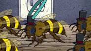 Short8 bee closeup